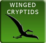 Winged Cryptids